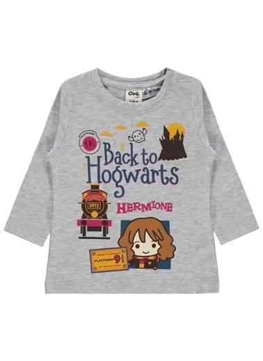 Harry Potter Sweatshirt Gri